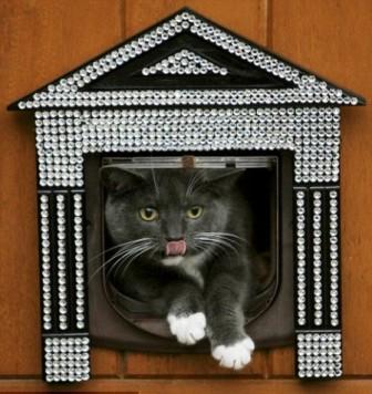 http://artstyling.ru/images/stories/luxury/cat.jpg